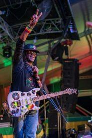 Junior Marvin - Wailers